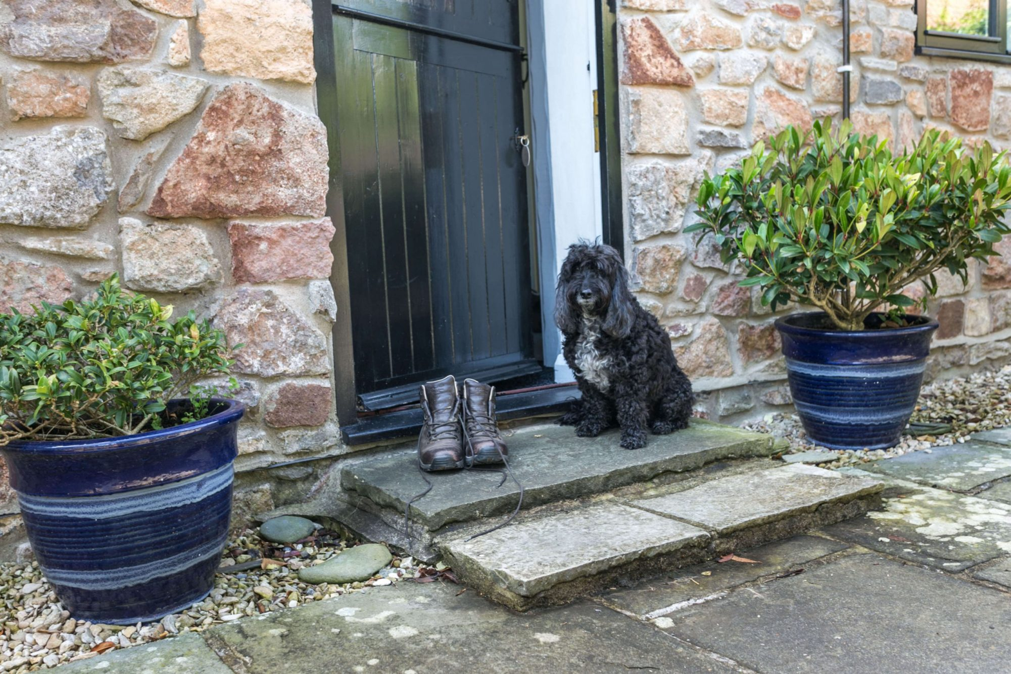 Home Farm Holiday Cottages Dogs Welcome Enclosed Garden North Somerset